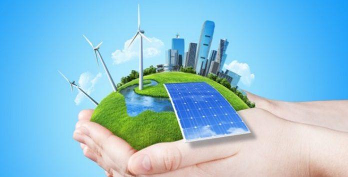 O que fazer em tempos de transição para as energias renováveis – Artigo de Tânia Costa e Sousa